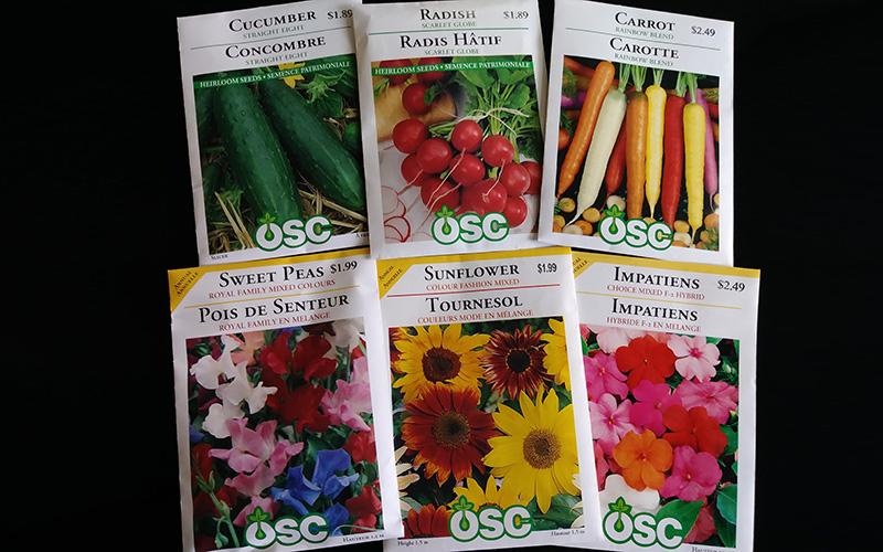 Seeds for spring planting
